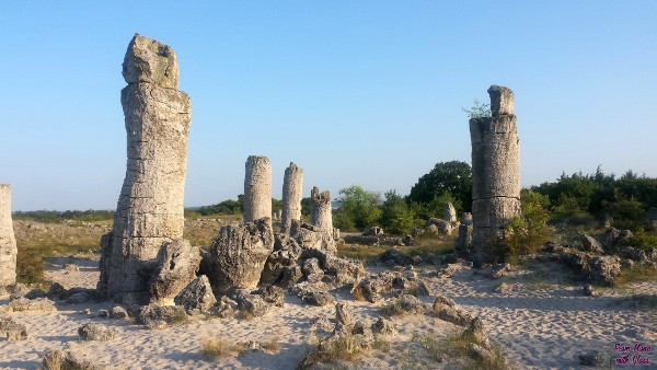stone forest bulgaria fmwg travel