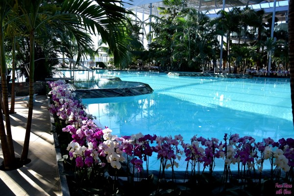 therme fmwg 1