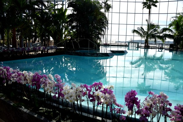 therme fmwg 12