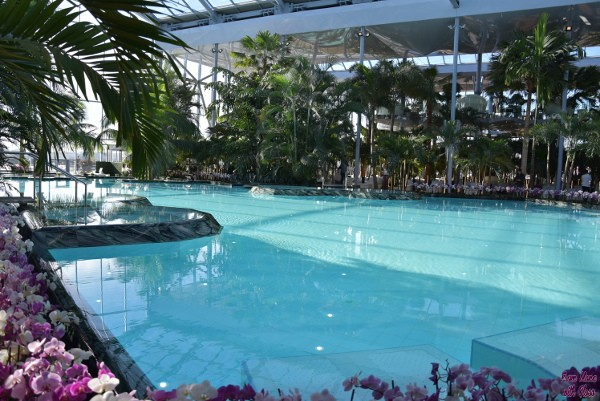 therme fmwg 13