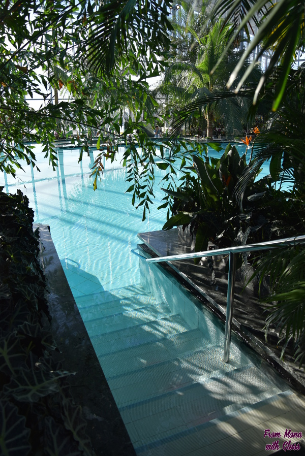 therme fmwg 16