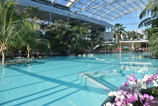 therme fmwg 18
