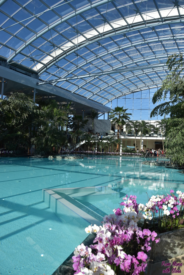 therme fmwg 19