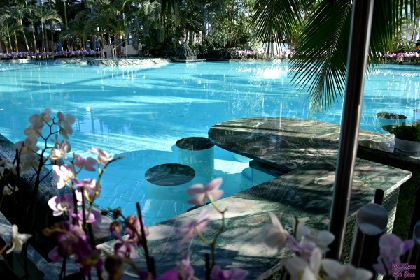 therme fmwg 24