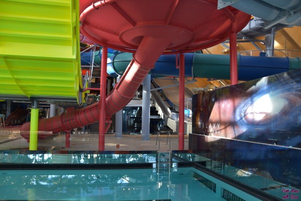 therme fmwg 31