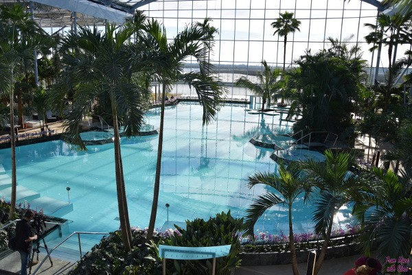 therme fmwg 35