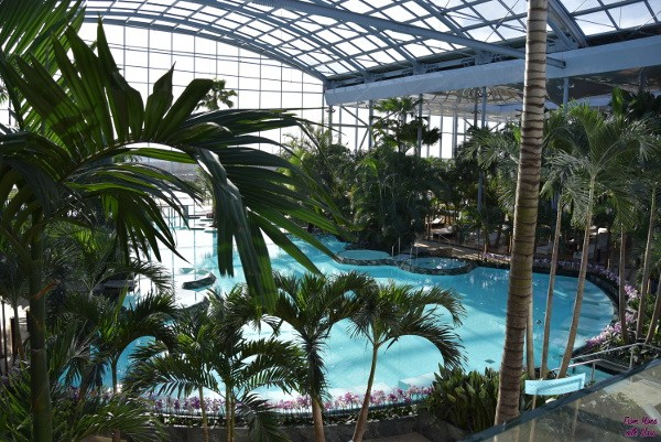 therme fmwg 36